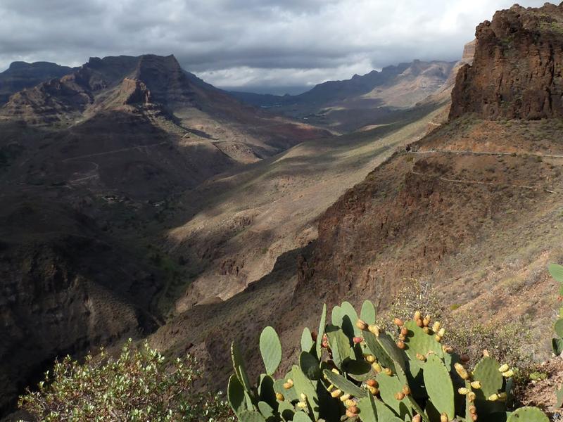 Voyage d'étude aux iles Canaries