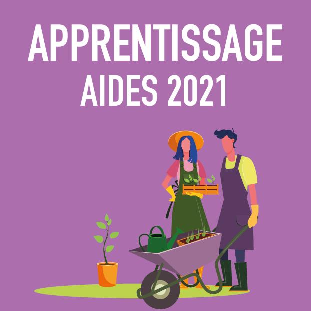 Apprentissage aide 2021